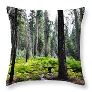 Panoramic Forest Throw Pillow