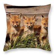 Panoramic Fox Kits Throw Pillow