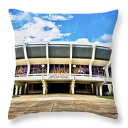 Panoramic P Mac Throw Pillow