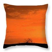 Panoramic Prairie Sunset Throw Pillow
