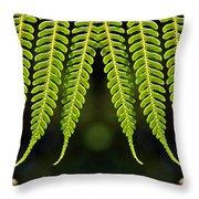 Panoramic Veil Of Ferns Throw Pillow