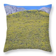 Panoramic View Of Desert Gold Yellow Throw Pillow