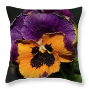 Pansie Throw Pillow