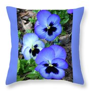 Pansies 0823 Throw Pillow