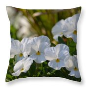 Pansies 15-02 Throw Pillow