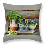Pansies In Pots Throw Pillow