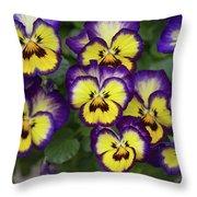Viola Throw Pillow