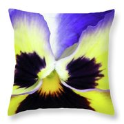 Pansy 10 - Thoughts Of You Throw Pillow