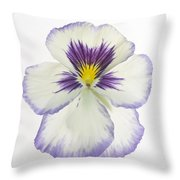 Pansy 2 Throw Pillow