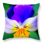 Pansy Throw Pillow by Kathleen Struckle