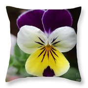 Pansy White Wings Throw Pillow