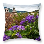 Panza Verde Hotel Rooftop 1 Throw Pillow