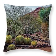 Papago And Barrels Throw Pillow
