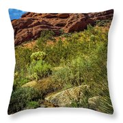 Papago Mountain Throw Pillow