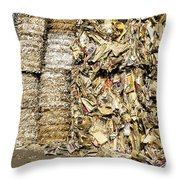 Paper For Recycling Throw Pillow
