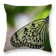 Paper Kite Butterfly- 2 Throw Pillow
