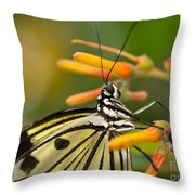 Paper Kite Butterfly With Orange Flower Throw Pillow