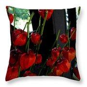 Paper Lantern Plant Throw Pillow