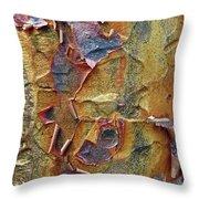 Paperbark Maple   Throw Pillow