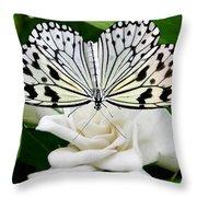 Paperkite On Gardenia Throw Pillow