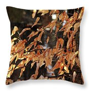 Papery Beech Leaves Throw Pillow