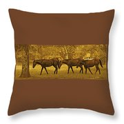 Parade In The Shade On A Hot Afternoon Throw Pillow