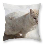 Paradise Dweller Throw Pillow