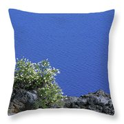 Paradise For Backpackers - Crater Lake In Crater National Park - Oregon Throw Pillow