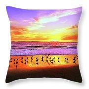 Paradise Found, Huntington Beach, California, Catalina Island Throw Pillow