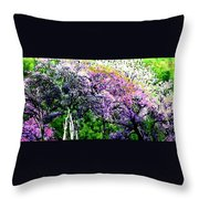 Paradise Hills Throw Pillow