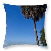 Paradise In Sarasota, Fl Throw Pillow by Michael Tesar