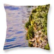 Paradise Lake Shore Throw Pillow