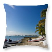 Paradise Throw Pillow by Michael Tesar