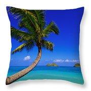 Paradise Palm Over Lanikai Throw Pillow