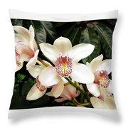 Paradise Perfection Throw Pillow