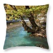 Paradise River Throw Pillow