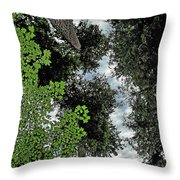 Paradise To Lovers Of Big Trees - Olympic National Park Wa Throw Pillow by Christine Till