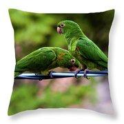 Parakeet Couple Throw Pillow