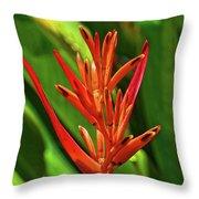 Parakeet Flower Exotic Throw Pillow