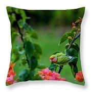 Parakeet South Maui Throw Pillow
