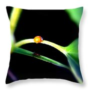 Parallel Paths Throw Pillow