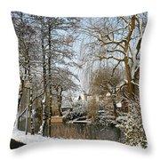 Walk In A Snowy Park Throw Pillow