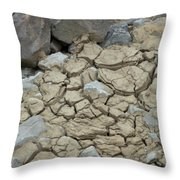Parched Earth Throw Pillow