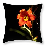 Pardon Me At Night Throw Pillow