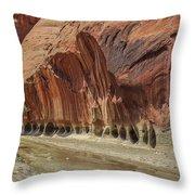 Paria River In Paria Canyon-vermillion Cliffs Wilderness Throw Pillow