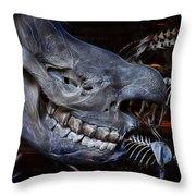 Paris Gallery Of Paleontology 2 Throw Pillow
