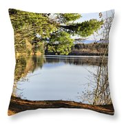 Park And View Throw Pillow