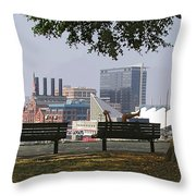 Park Bench Reading Throw Pillow