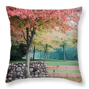 Park In Autumn/fall Colors Throw Pillow
