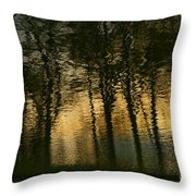 In The Park . Throw Pillow